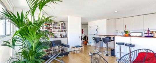 photos-appartement-paris Casimir